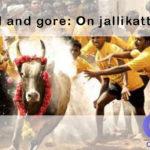 Today's Focus on The Hindu  Bull and gore: On jallikattu